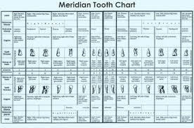Dental Cavities Tumblr