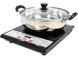 Amazon Com Tayama Induction Cooker With Cooking Pot