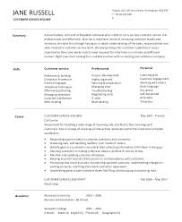Customer Service Resume Summary Interesting Resume Summary Examples For Customer Service Manager Statement