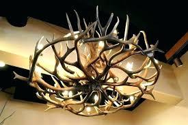 elk horn chandeliers antler chandelier for deer antler chandelier elk horn chandelier large size elk horn chandeliers elk antler