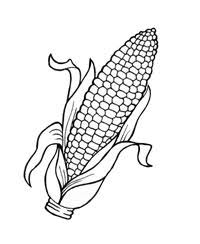 Corn Coloring Page Free Coloring Pages On Art Coloring Pages