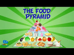 Food Pyramid Project The Food Pyramid Educational Video For Kids Youtube