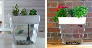 Stories - Cool Planters, Pots, and Vases (Part 2: Multi-functional) -  AXKA.COM