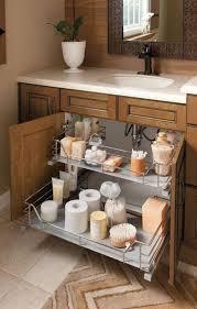 bathroom under sink storage ideas. 15 Amazing And Smart Storage Ideas That Will Help You Declutter The Bathroom. Under Bathroom Sink G