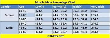Lbm Chart What Should Be The Muscle Mass And Fat Mass In A Healthy