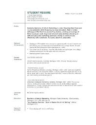 Resume Sample For College Students Magnificent Example Resume College Student No Work Experience Internship Resume