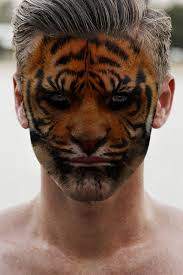 man tiger face free pictures free photos free images