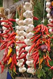 Gewürze, Paprika, Zwiebeln, Tomaten, Gemüse