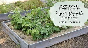 organic gardening step one planning