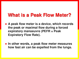 Peak Flow Chart Calculator Asthma Basics
