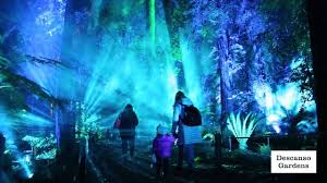 Enchanted Forest Of Lights Descanso Jonathan Scott Visited Descanso Gardens Enchanted Forest Of