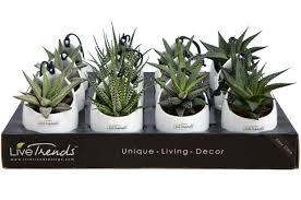 Livetrends Design Group Zen Pocket By Livetrends Design Decor Modern