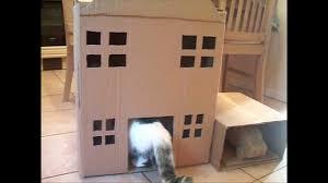 Cat House Homemade Cat Tree Cat House Youtube