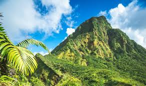 Dominica god hath blest thee, with a clime benign and bright, pastures green and flow'rs of beauty the sisserou parrot (amazona imperalis), the pride of dominica, is generally recognized as the. Dominica Launches Work In Nature Digital Nomad Visa