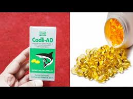 cod liver oil benefits for skin hair nail eyes in hindi and urdu