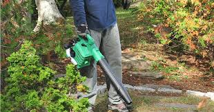 hitachi gas leaf blower. need to clean up fall leaves? hitachi gas leaf blower a