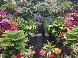 25 beautiful koi pond ideas for your