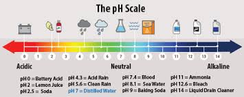 Designing A Color Changing Paint Using Ph Activity
