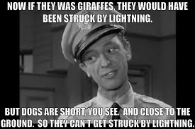 Barney Fife Quotes Mesmerizing 48 Barney Fife Quotes The Best Barney Saying QuotesNew
