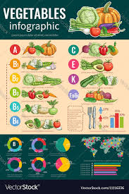 Healthy Vegetables And Vitamins Infographics