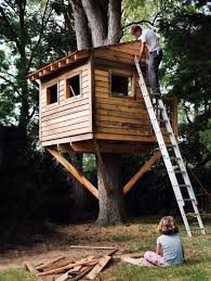this tree house is another traditional style it is basically a little building in a tree that has four walls and some windows