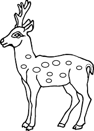 Small Picture Coloring Pages Animals Llama Coloring Page Deer Coloring Pages