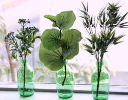 DIY plant decorations for the home