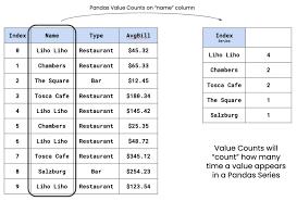 pandas value counts pd series