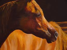 arabian horse painting arabian horse oil painting by mary jo zorad