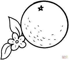 Small Picture Orange 1 coloring page Free Printable Coloring Pages