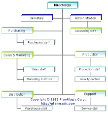 company organizational structure okl mindsprout co online business plan the organizational structure