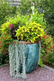 Small Picture Container Garden Designs and Recipes So You Can Easily Recreate Them