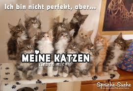 Schöner Spruch Für Katzenliebhaber Sprüche Suche