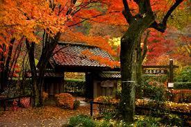 sigma, architect, pentaxart, woodland ...