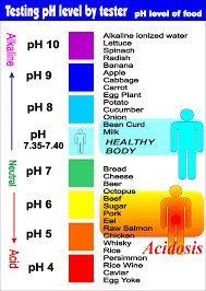 Alkaline Ph Level Chart Foods That Are Alkaline And Acidic Alkaline Foods Ph