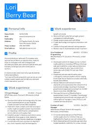 Projects On Resume Resume Examples By Real People Project Manager Journalist Cv