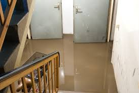 Image result for Flooded basement