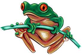 Image result for frog clip art