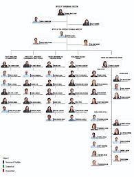 Neda Organizational Chart Neda Organizational Structure Neda Region Vi