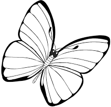 Small Picture Simple Butterfly Coloring Pages GetColoringPagescom