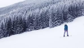 ski and snowboard at mammoth mountain