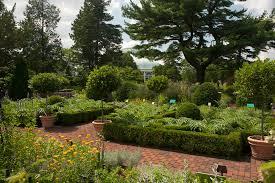 martha stewart herb garden by nybg