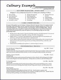 Political Analyst Sample Resume