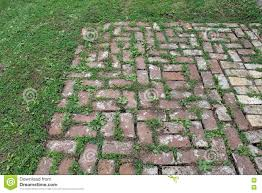 patio pavers with grass in between. Contemporary With Red Brick Patio With Grass Growing Between The Pavers To With In