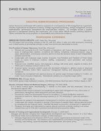 Strong Resume Objective Statements Examples Career Change Resume Objective Statement Examples Free Resume