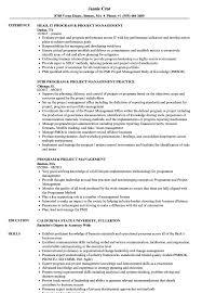 Program Project Management Resume Samples Velvet Jobs