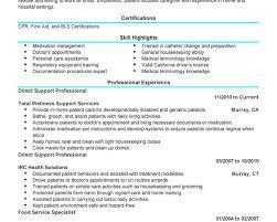 Resume Builder Resume Maker Live Resume Builderml Resume Maker Mac