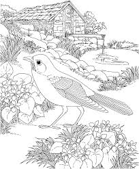 Small Picture Free Printable Coloring PageWisconsin State Bird and Flower
