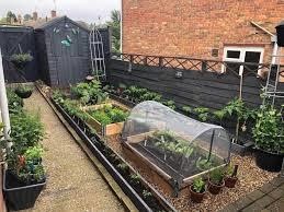 the top 80 vegetable garden ideas