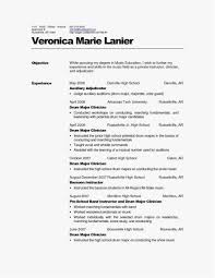 Resume Services Review Example Professional Resume Writers Chicago